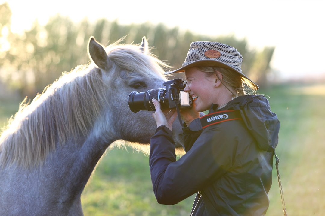 horse-and-photo